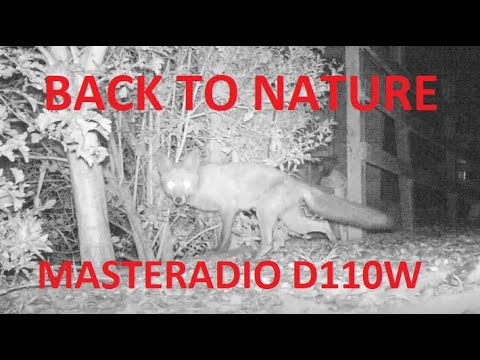 back-to-nature---masteradio-d110w