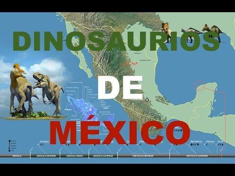 17 Dinosaurios Que Habitaron En Mexico Parte 1 Youtube Desde feroces terópodos como el tiranosaurio rex y el spinosaurus hasta enormes conoces ya la clasificación de los dinosaurios y cómo se dividen sus subórdenes, pero. 17 dinosaurios que habitaron en mexico