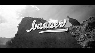 Baauer - Harlem Shake (Rip)