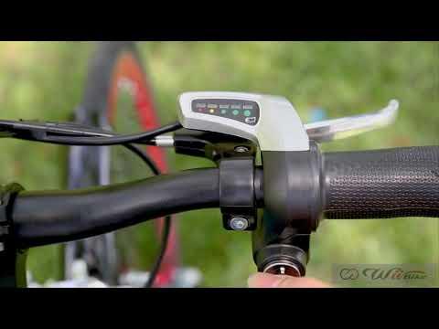 Quảng cáo xe đạp điện trợ lực Wii Bike