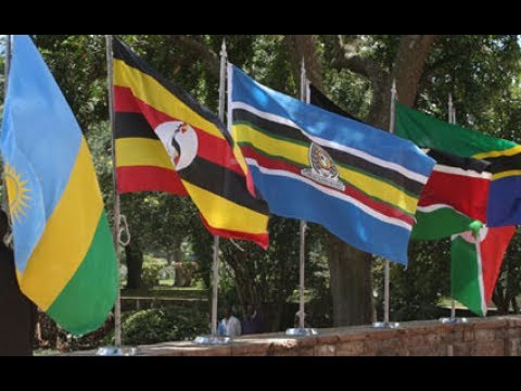 East Africa states faulted for developing individualistic policies