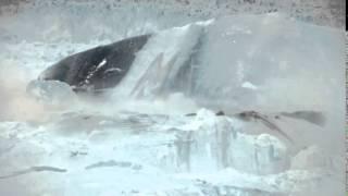 L'effondrement et la fonte d'un glacier filmés en direct dans cette vidéo