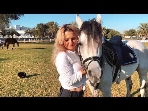 Barjas. Dubai Polo & Equestrian Club