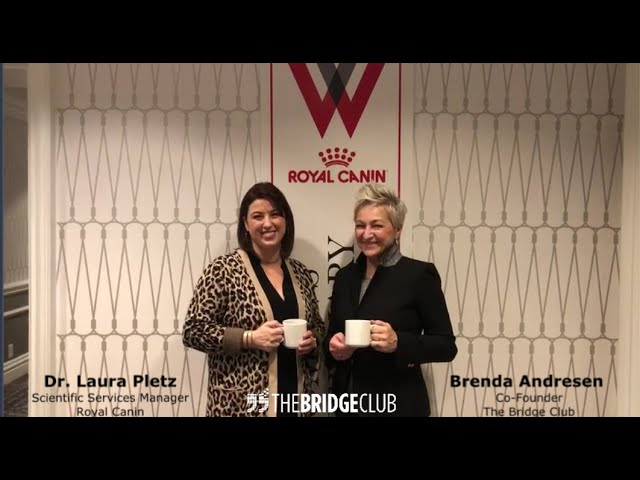 Dr. Laura Pletz Connects with The Bridge Club