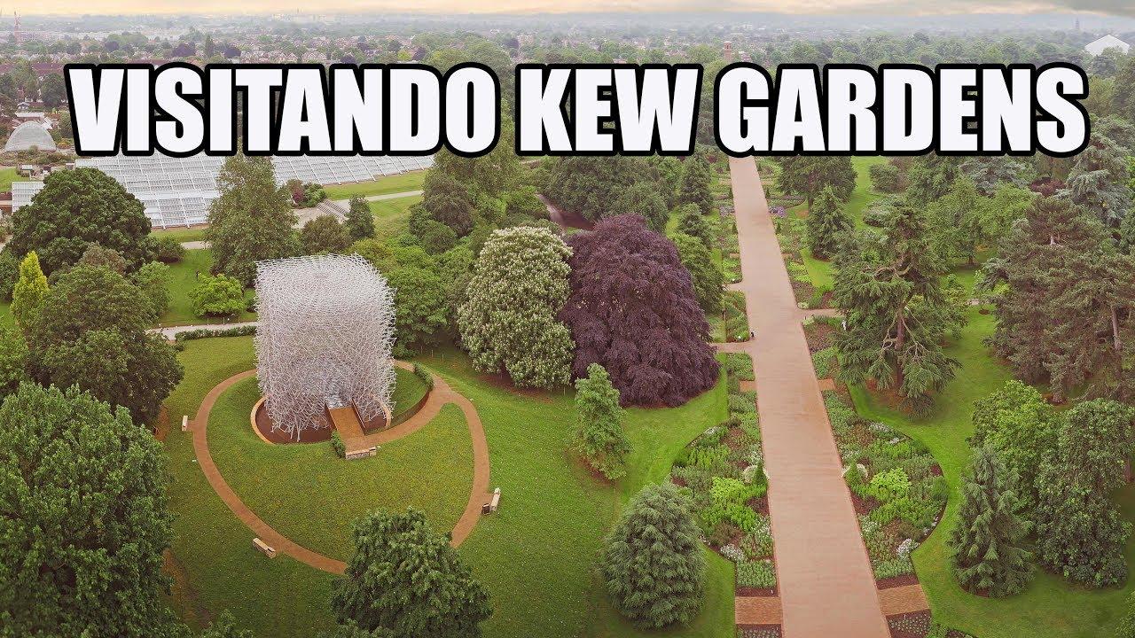 Que ver en el jardin botanico de LONDRES KEW GARDENS | Lugar para ...