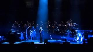Stranger - Goldfrapp at the Royal Albert Hall