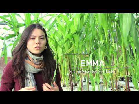 Sustainable Agriculture B.Sc.  - Video Made by Students