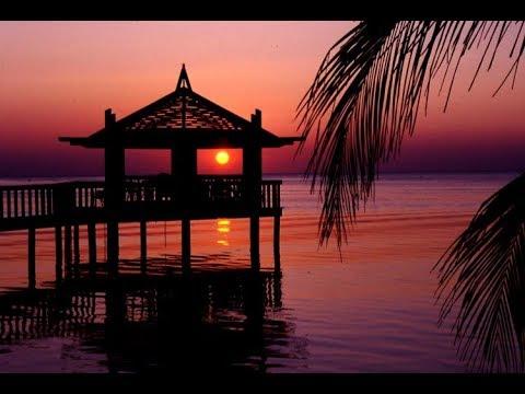 A Cabana Junto À Praia. José Cid