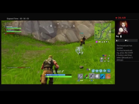 FORTNITE #1 NZ PLAYER PS4 1200 WINS