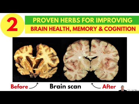 😵-2-clinically-proven-herbs-for-improving-brain-health,-memory-&-cognition---by-dr-sam-robbins