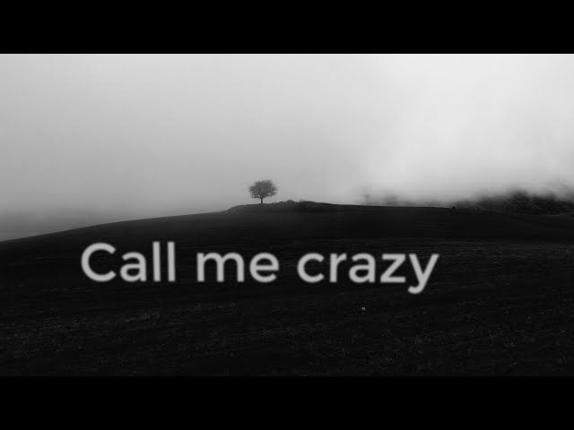 Sebu / Misho / Serj Tankian - Introvert (Call Me Crazy) - lyric video