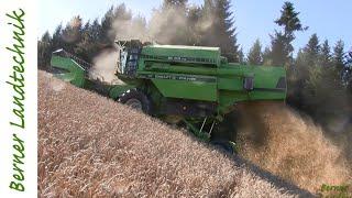 Der Kampf am Berg | Winterweizen dreschen | Getreideernte