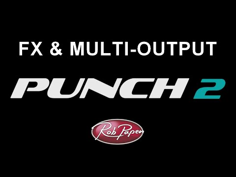 Punch-2 FX and Multi Output