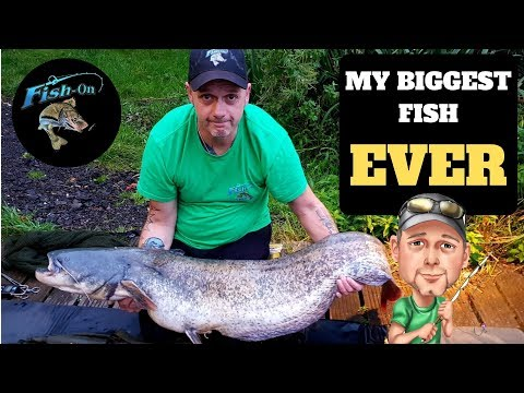Carp & Cats Episode 3 The Biggest Fish I've Ever Caught 24hrs At Weston Lawns Fisheries