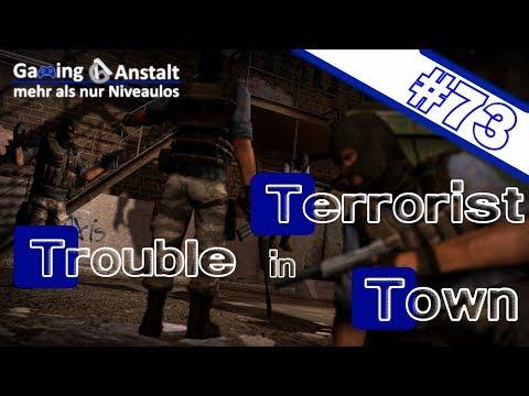 Falsche Verdächtigungen 🎮 #73 | Trouble in Terrorist Town
