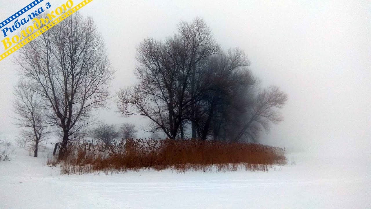 Зимова риболовля в туман