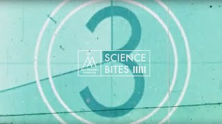 ÅAU Science Bites – CAN WE HALT THE SPREAD OF HIV? thumbnail