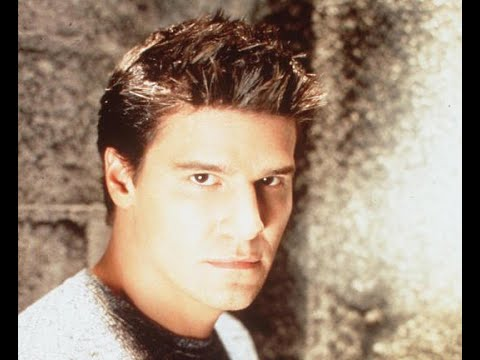 David Boreanaz TV Roles Through the Years