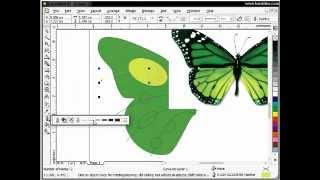 tutorial meniru menjiplak objek gambar kupu kupu