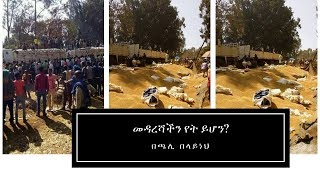 Download Video ETHIOPIA - መንግሥት ሆይ… እባክህ ንቃ! | ጫሊ በላይነህ MP3 3GP MP4