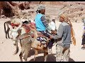 Petra Valley Jordan