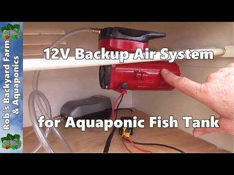 12V Backup Air System For Aquaponic Fish Tank. IBC System Construction Part 9.
