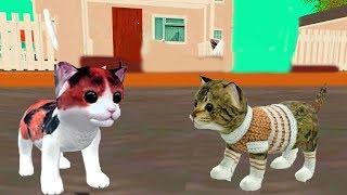 Симулятор маленького котёнка Cat Sim #1  Начало истории мульт-игра про котят развлекательное видео