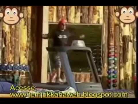 Olha Macaco- MEME [DESCARGAR]