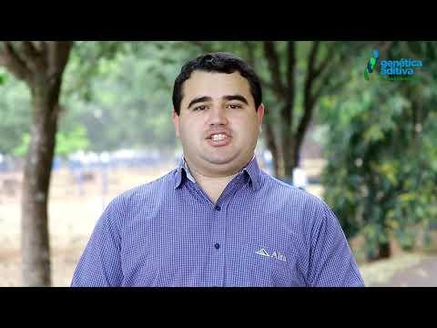LOTE 1001 - DEPOIMENTO DANILO RODRIGUES - REM ICONE ALTA GENETICS