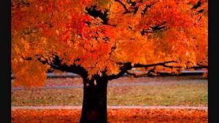 Download Four Seasons ~ Vivaldi Mp3 and Videos