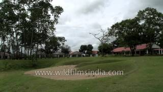 Kaziranga Golf Resort - heritage tea estate bungalow in Assam