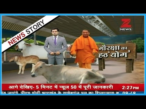 Yogi Adityanath takes stringent action against Illegal slaughterhouse across the state
