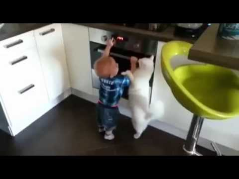 Cat Protects Baby Boy From Touching a Hot Stove