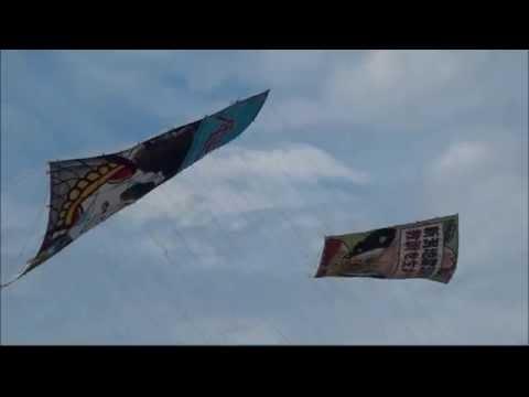 Shirone, Niigata University kite-fighting