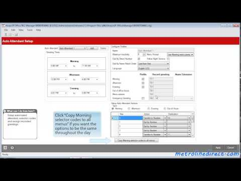 Avaya IP Office -  How to Program Auto Attendant on IP500