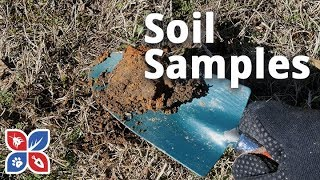 Do My Own Lawn Care - Soil Samples