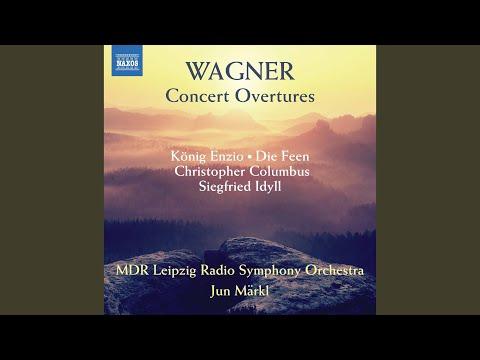 Concert Overture No. 1 in D Minor, WWV 20