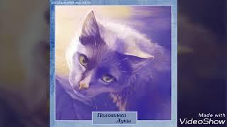 Герои книг Коты-Воители Клан Падающей Воды (Древний Горный Клан)