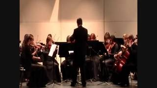 Love Story by Taylor Swift (string orchestra)