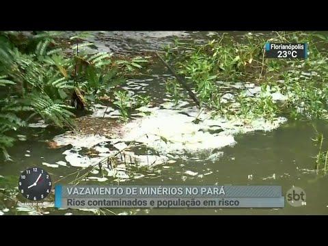 Vazamentos de rejeitos em Barcarena foi maior do que se imaginava | SBT Brasil (28/03/18)