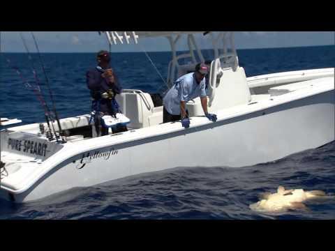 "Into The Blue: ""Key West Gulf Wrecks"" 2013 : Season 5 Episode 4"