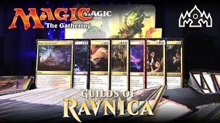 Magic: The Gathering - Дисплей Гильдии Равники (Guilds of Ravnica)
