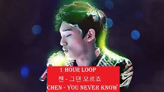 [1 HOUR LOOP] 첸 - 그댄 모르죠    CHEN - You Never Know