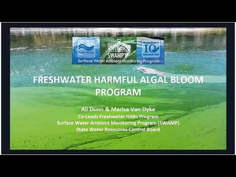 Harmful Algal Blooms and Water Recreation