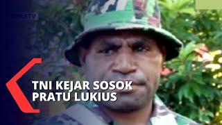 DPR Minta Mantan Anggota TNI, Pratu Lukius yang Membelot ke KBB Papua Ditangkap!