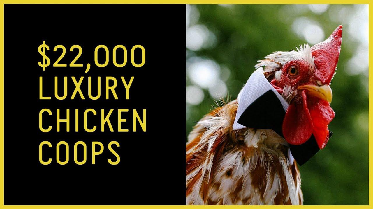 Kathy Vegh's $22,000 Luxury Chicken Coops
