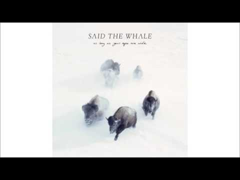 I Will Follow You - Said The Whale