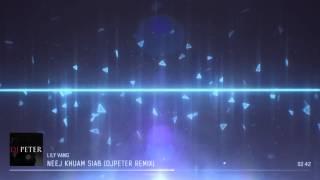 Lily Vang - Neej Khuam Siab (DJPeter Remix)