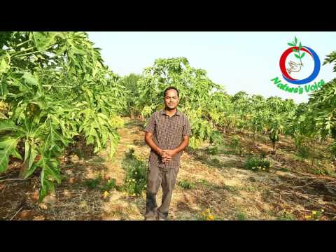 Natural Farming | Software Engineer turns a Successful Farmer (English) | Parthasarathi