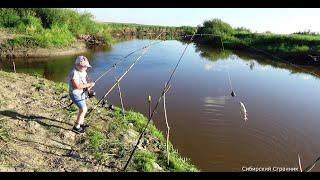 С семьей на рыбалку Запекаем на углях свежую рыбу